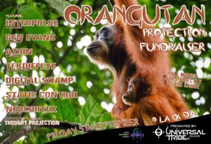 Orangutan Protection Fundraiser